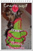 Moda flamenca para tu mascotas!