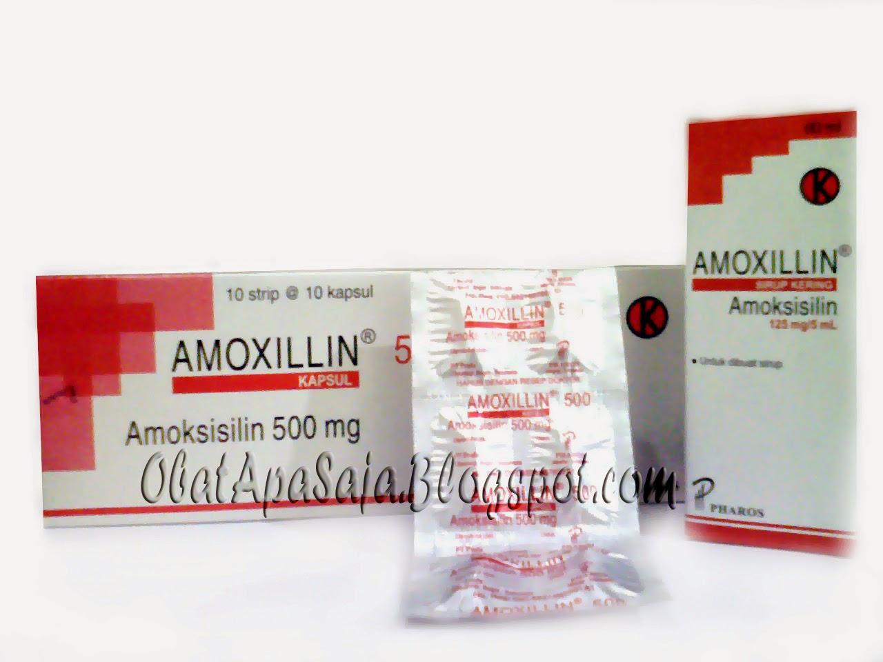 Amoxillin antibiotik Amoxicillin