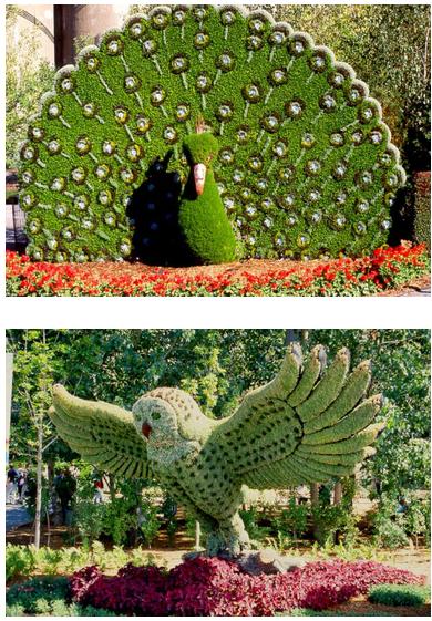 Home decor 20 stunning animal shaped trees gardens for Garden trees b q