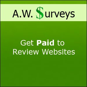Earn money from Survey Jobs