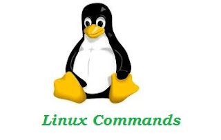 gzip Linux Command Examples