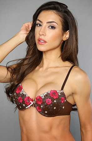 The Bella Italia Demi Bra in Cerise Photo zooms unavailable for this product.
