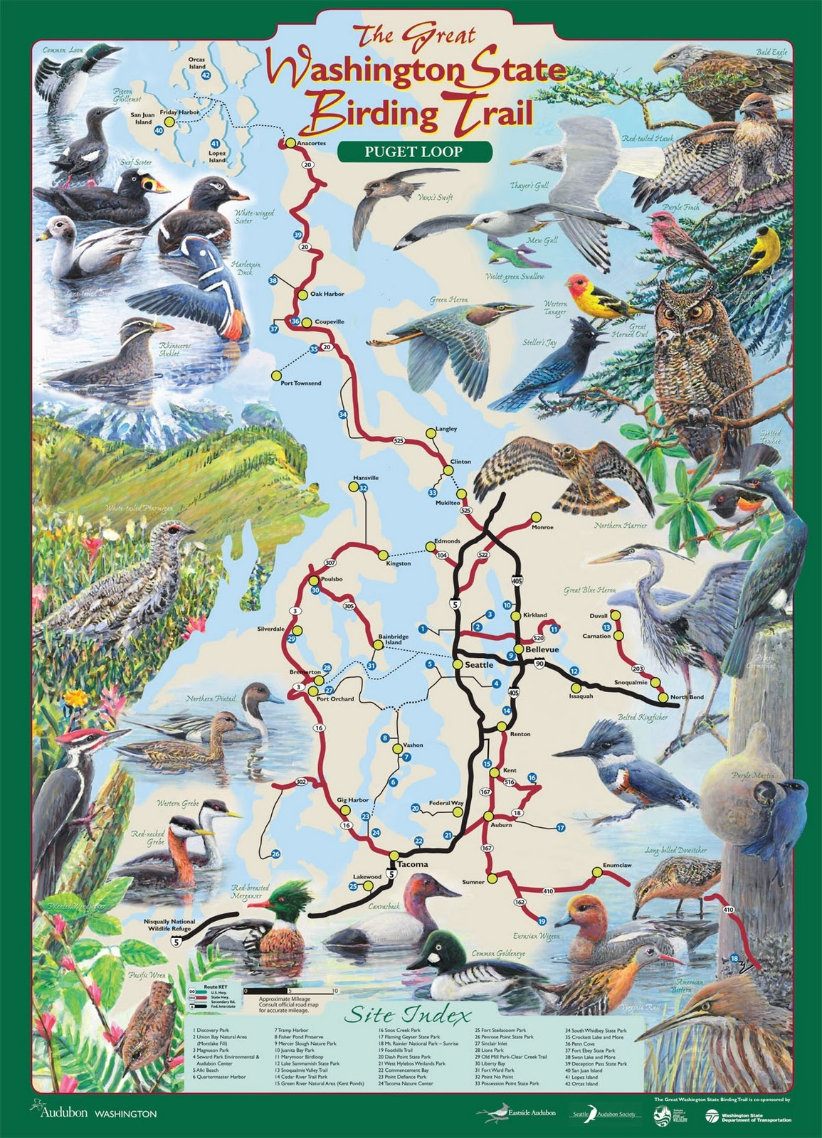 audubon map new puget sound loop unveiled as enviro groups strategize