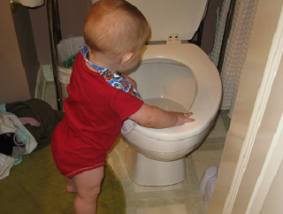 A toilet, that seems silly, just use a diaper.