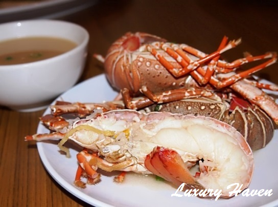 orchid live seafood restaurant lobster