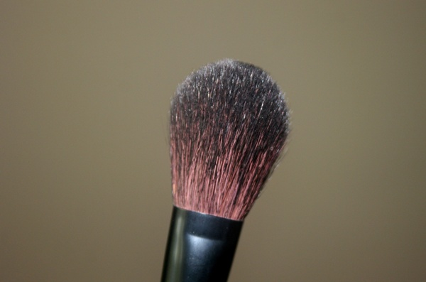 Groomer S Blend Dog Shampoo