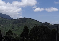 munnar homestay with mountian view, hometay in munnar wth sceinc location