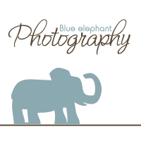 Blue Elephant Photography