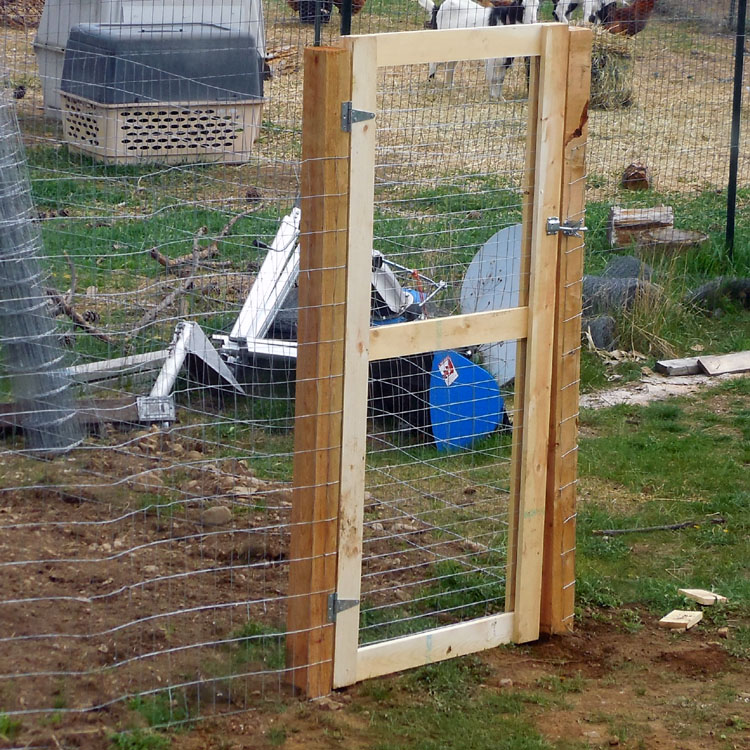 Putting up fence and building a gate no deer or goats will digin to my berry garden ad - Build wire fence foundation ...