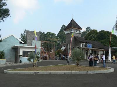 gambar kebun raya cibodas