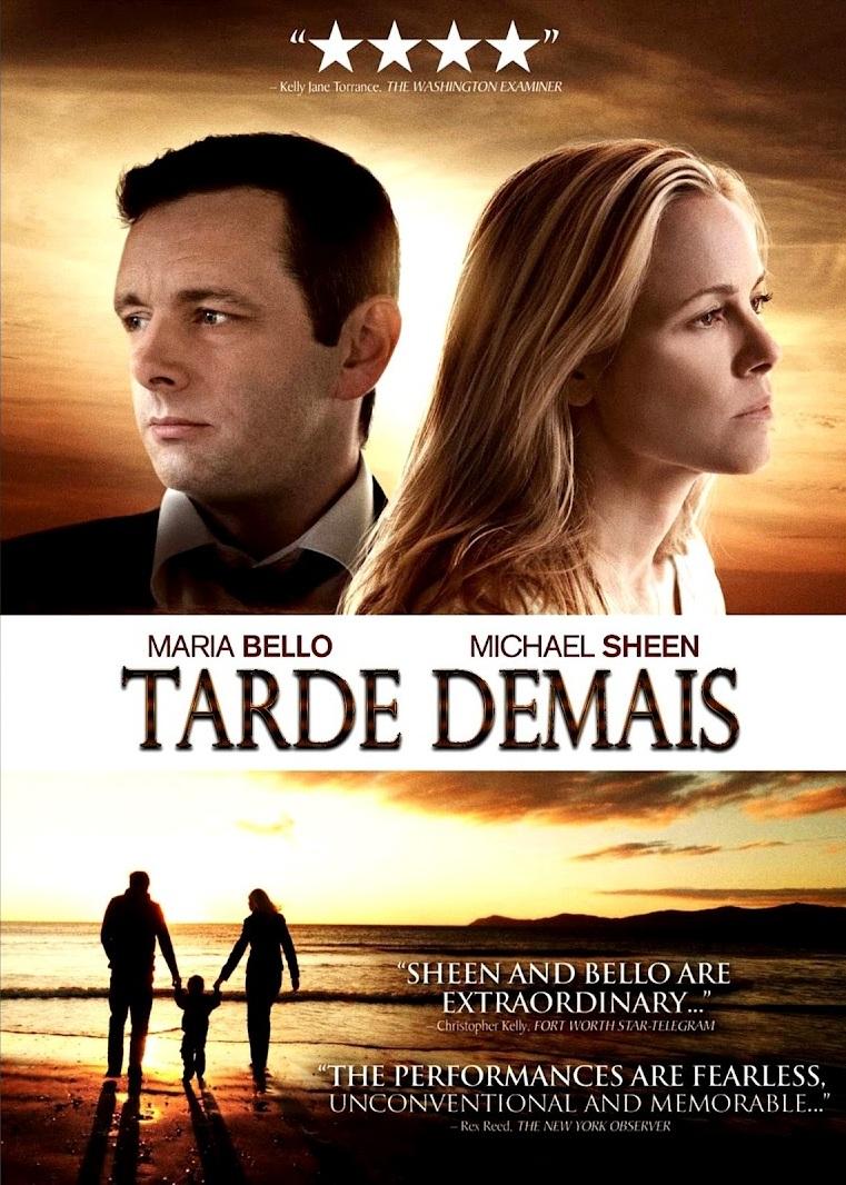 Tarde Demais – Dublado (2010)