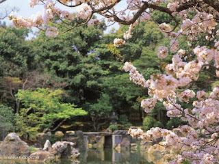 Awesome Natural Japanese Garden 2012 - 2100.