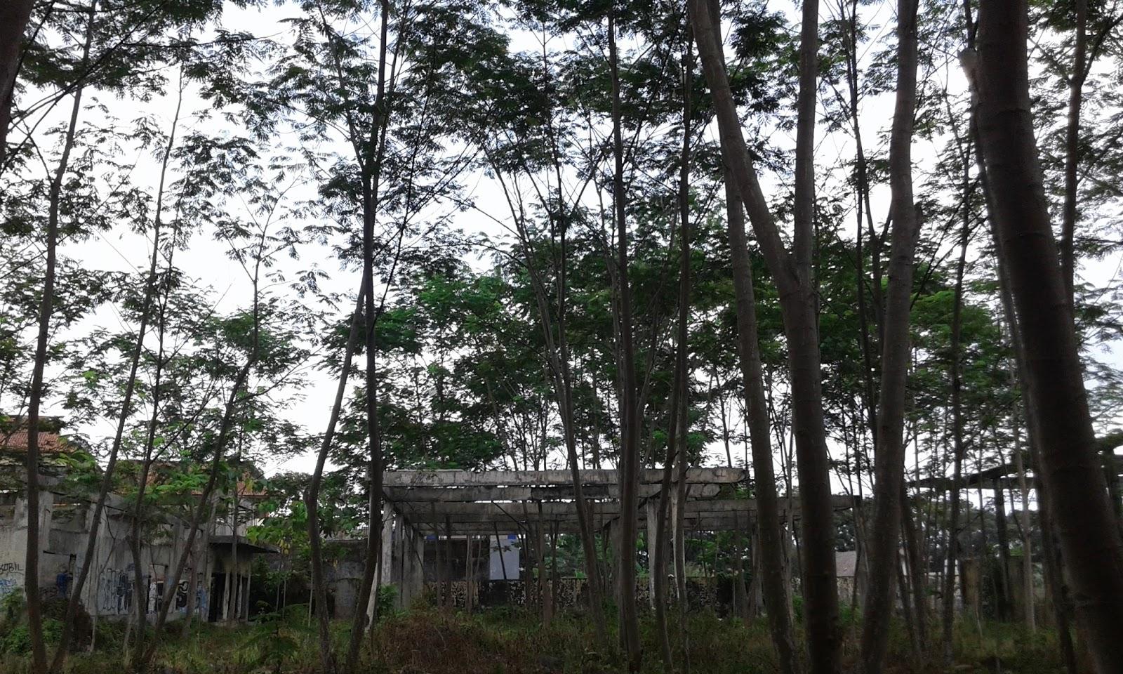 Hasil gambar untuk Pabrik Engsun Dadaha