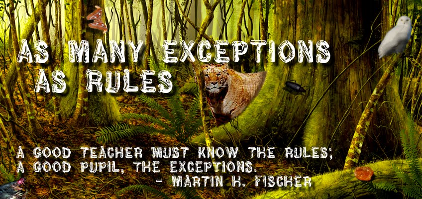 As Many Exceptions As Rules