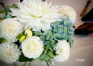 White ball and formal decorative dahlias