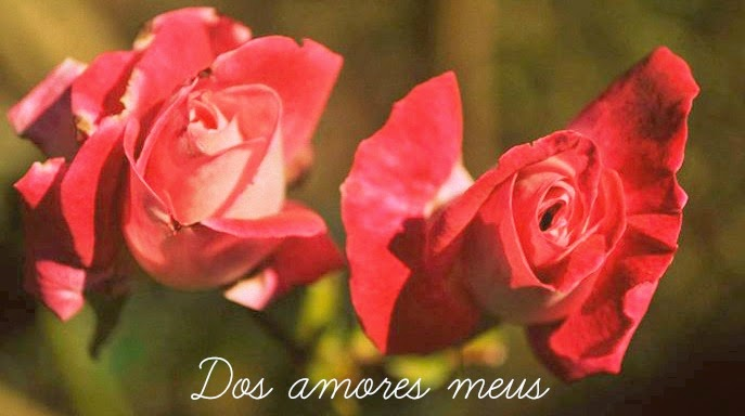 Dos amores meus