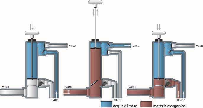Sea amor la vita di bordo uso del wc marino 4 puntata for Tubo di scarico del riscaldatore dell acqua