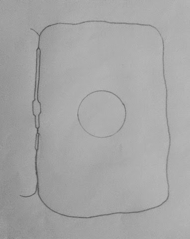 Draw it neat how to draw animal cell animal cells have a single highly complex and prominent golgi apparatus lets draw a typical animal cell here we go ccuart Gallery