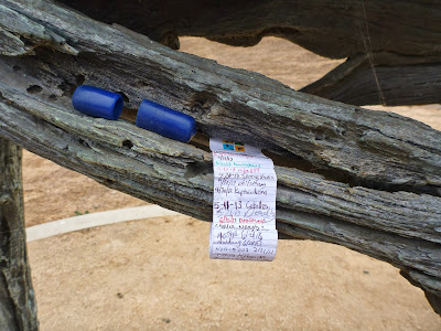 Geocaching capsule in the horse