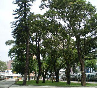 Curitiba Parques e Praças
