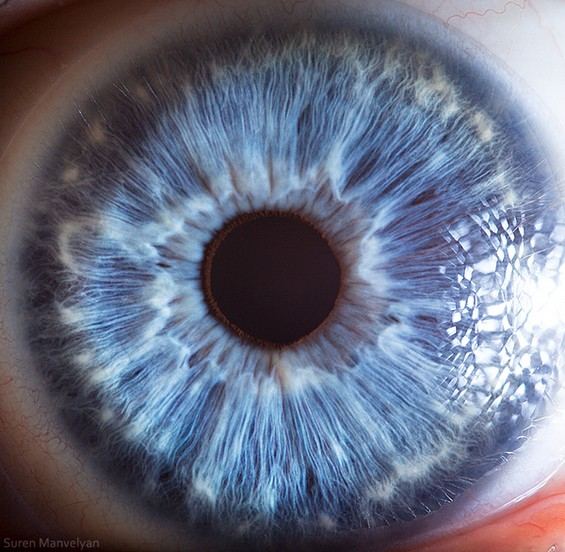 Extreme Close Up Photography of the Human Eye ~ Domestic ...