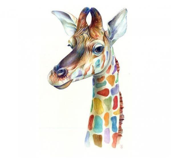 Bonita jirafa con cuello de colores