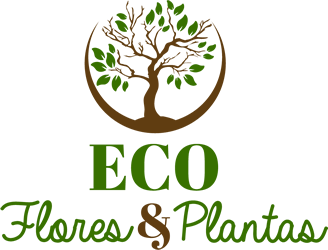 Eco Flores & Plantas