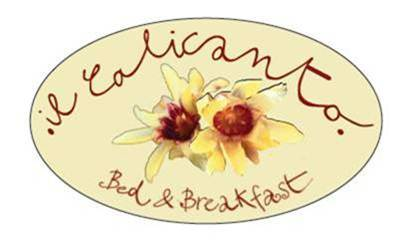 B&B..&B   Bed & Breakfast & Boutique