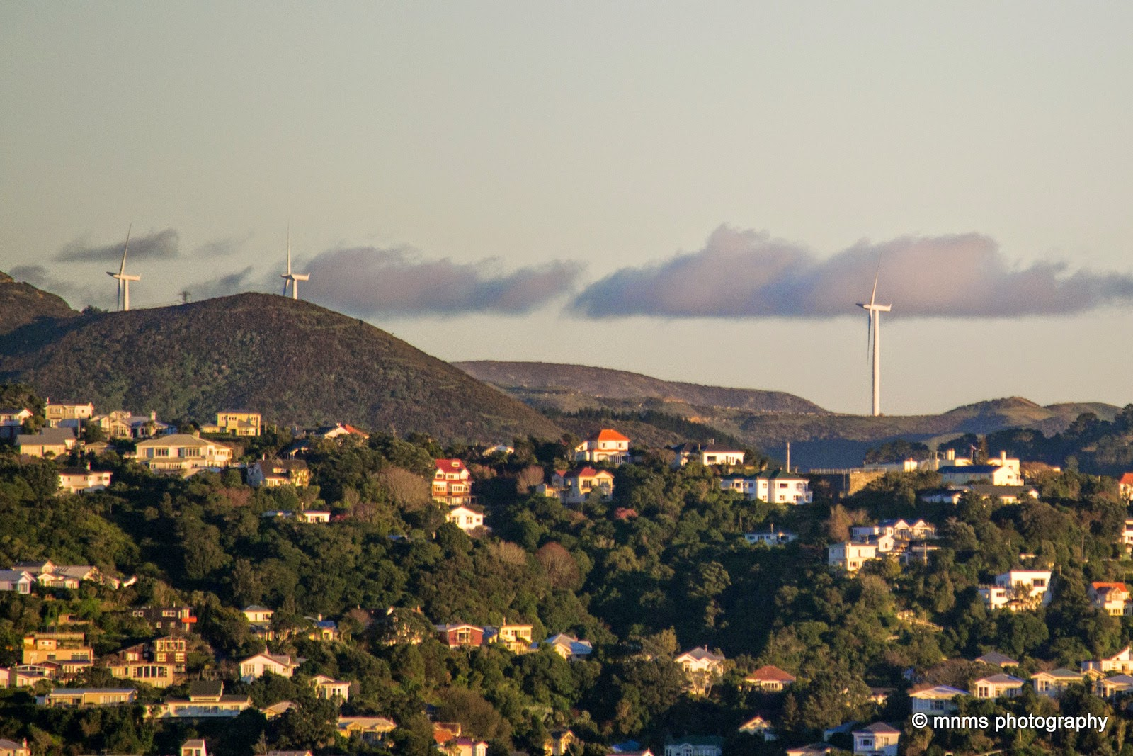 Wind farms from Wellington City