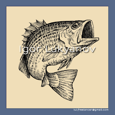 Fish (bass) illustration, drawing by Igor Lukyanov (cross-hatching)