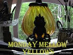 http://mondaymellowyellows.blogspot.com.es/