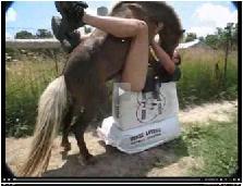 dando a bunda pra cavalo fuder,poney rendido trepando em viado,gay pra