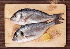 طرق لإختيار السمك الطازج - اكل دوت نت