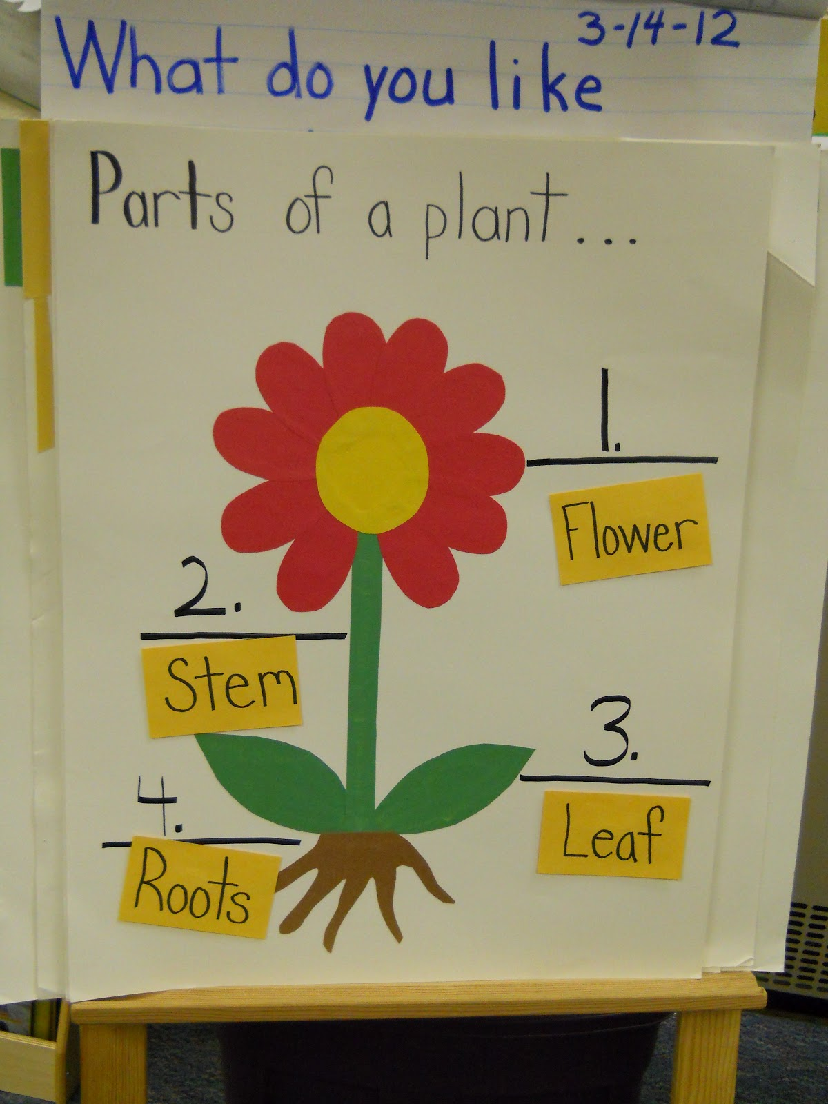 First Grade Magic How Does Your Garden Grow