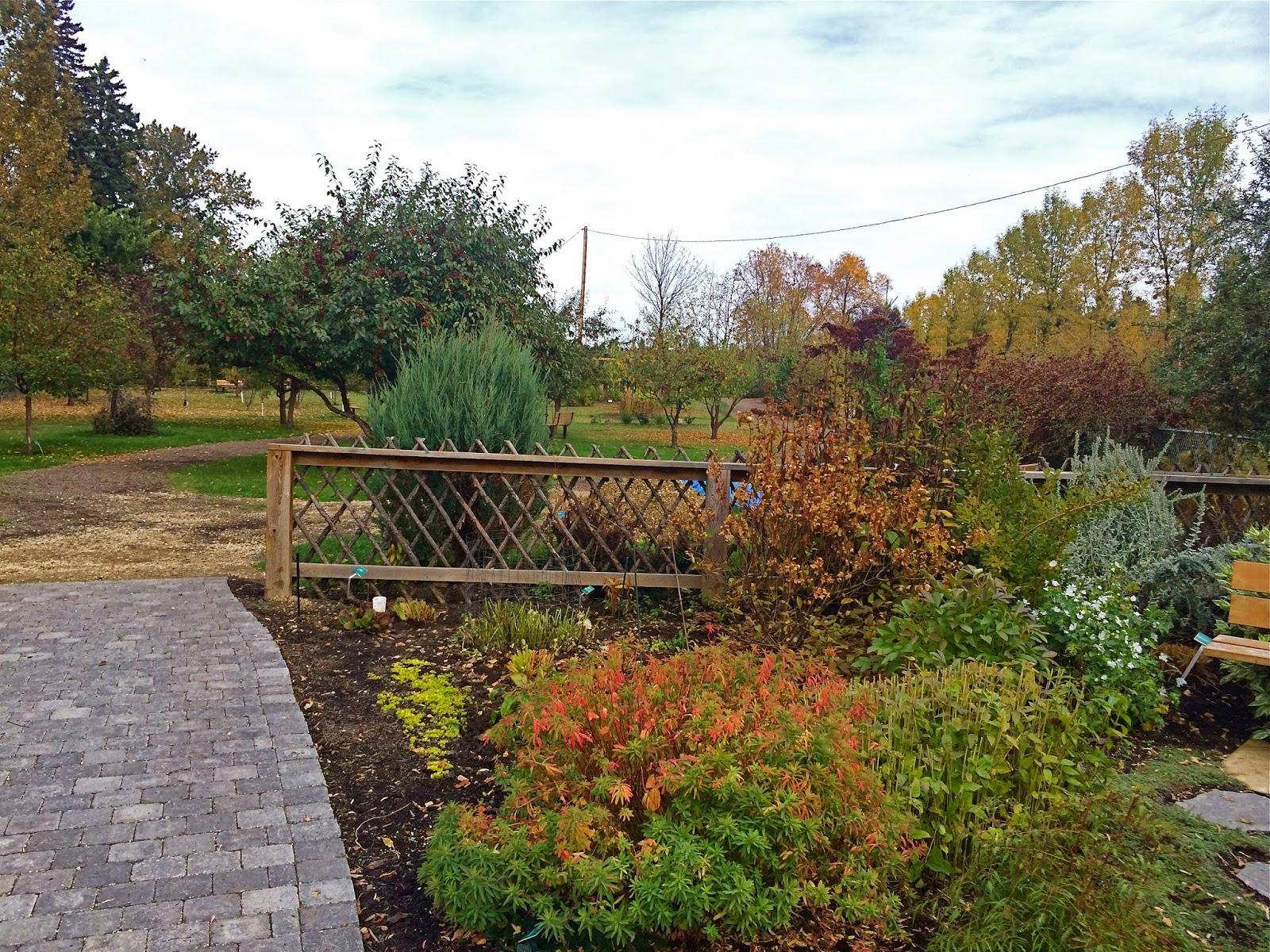 LIVING THE GARDENING LIFE: St. Albert Botanical Park - a gem in the ...