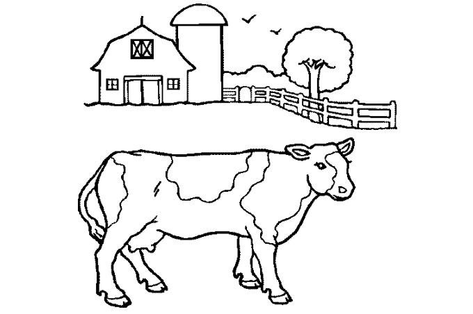 تلوين بقرة في المزرعة بصورة للتعليم الاطفال