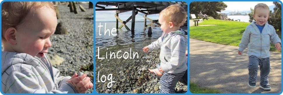 the Lincoln log