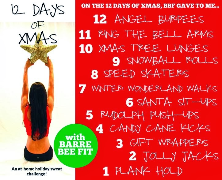so far the duo has published how tos for the first six days with more tips to come over the coming dayshead to barre bee fits youtube channel to get em - 12 Days Of Christmas Youtube
