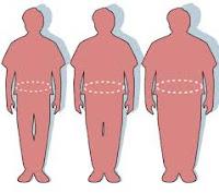 pencegahan obesitas mencagah obesitas anak