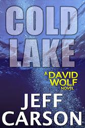 David Wolf Series Book 5