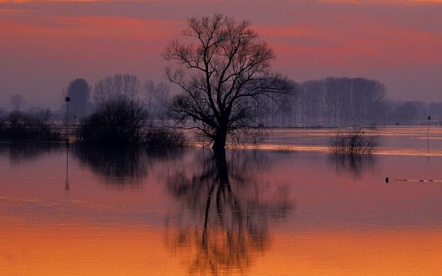 holland, the netherlands, dusk ijsselstreek