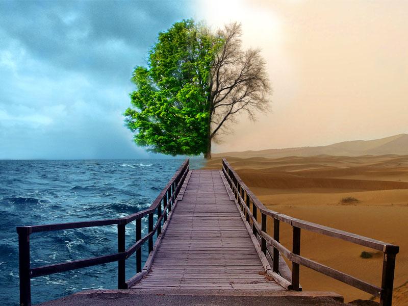 http://2.bp.blogspot.com/-bygFsY9La4Q/UTk9QDglU6I/AAAAAAAAAGk/Mr8KfY0FWlY/s1600/pengertian-lingkungan-hidup.jpg