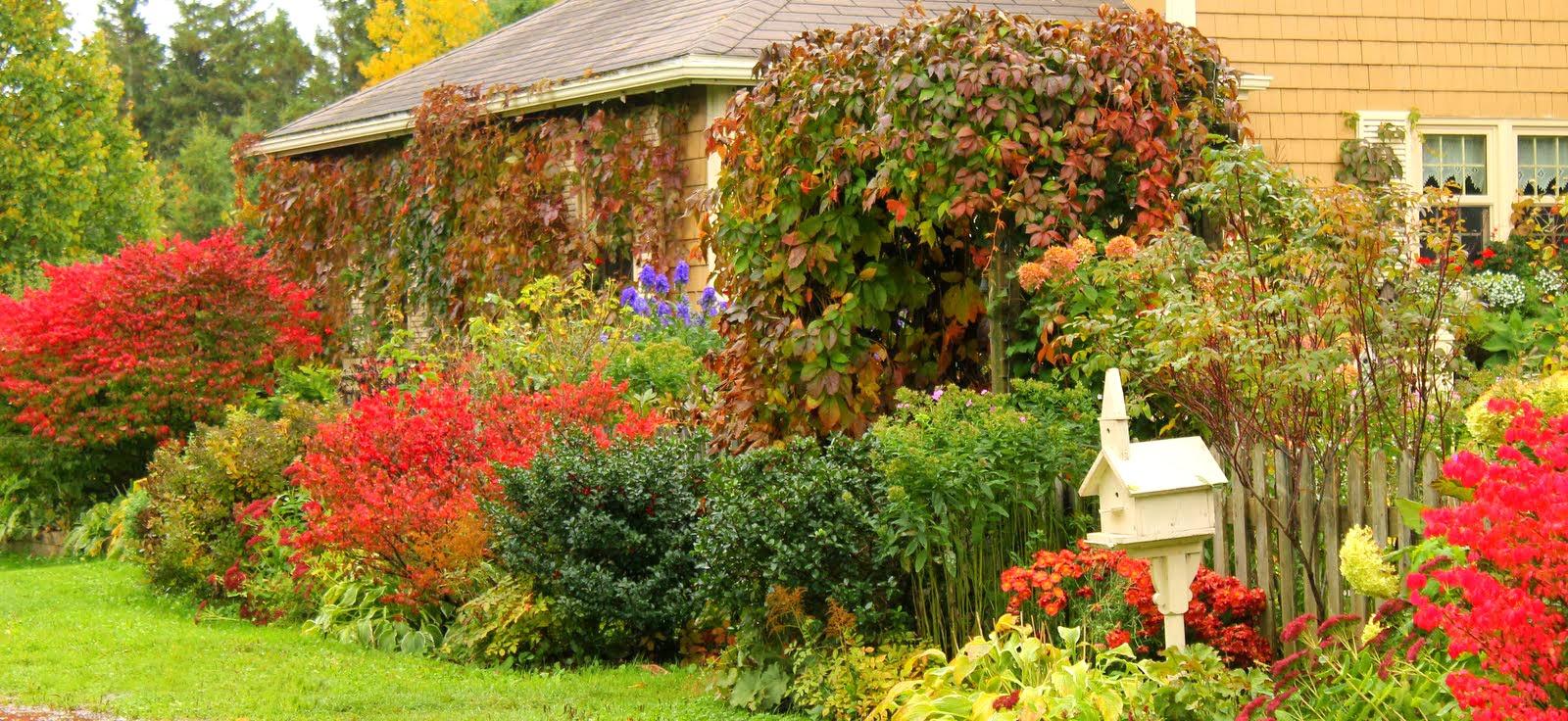 Arte y jardiner a el jard n en oto o for Jardines en otono