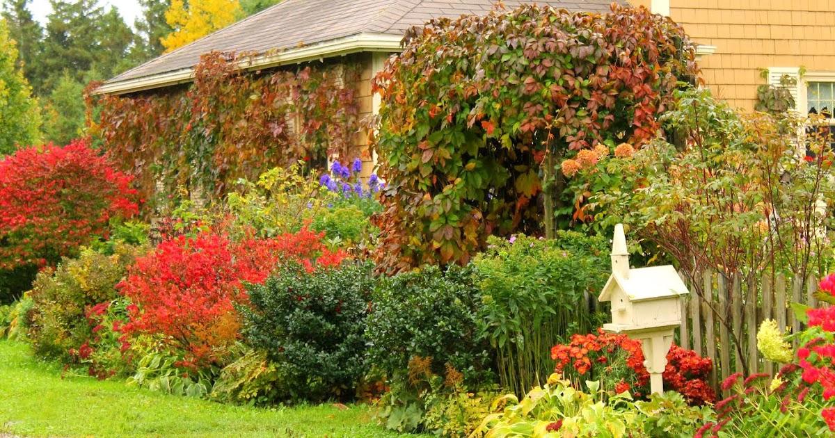 Arte y jardiner a dise o de jardines el jard n en oto o - Diseno de jardines madrid ...