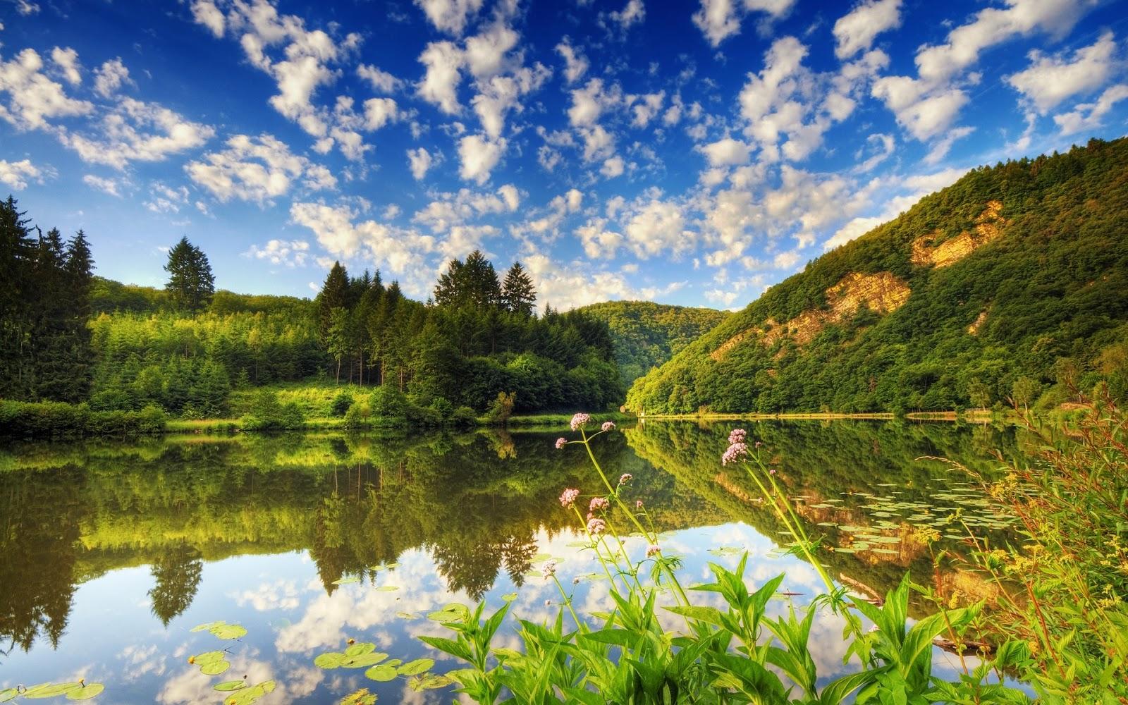 http://2.bp.blogspot.com/-bz1vm0koj2w/UdR_0hklMOI/AAAAAAAAAJI/S_083t5rcc0/s1600/paisaje+natural.jpg