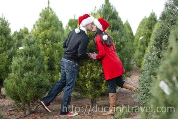 Rực rỡ với Abum cưới trong mùa Giáng Sinh 1