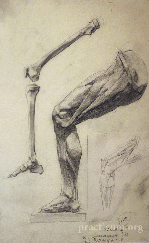 Figure Drawing Realism Classical Realism Figurative