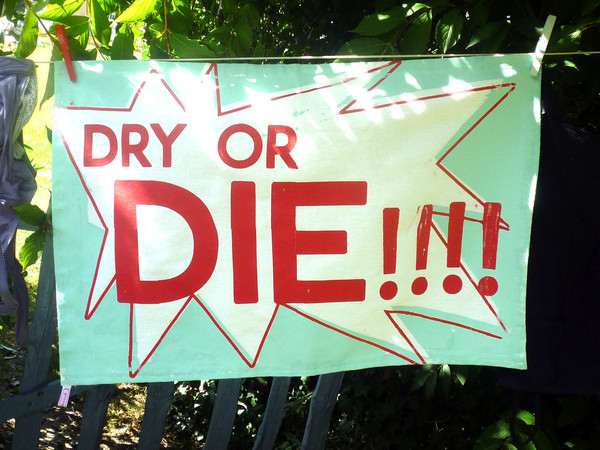 dry or die tea towel