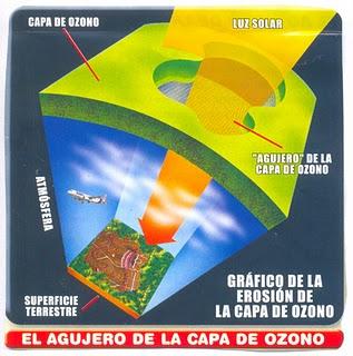 Como cuidar la capa de ozono