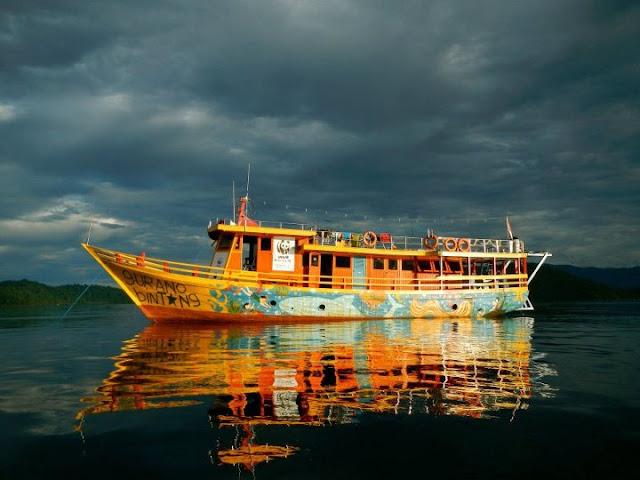 Lestarikan Teluk Cendrawasih, Kenalkan Lingkungan Sejak Dini